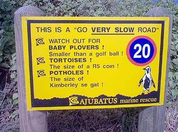 Potholes the size of Kimberley se gat