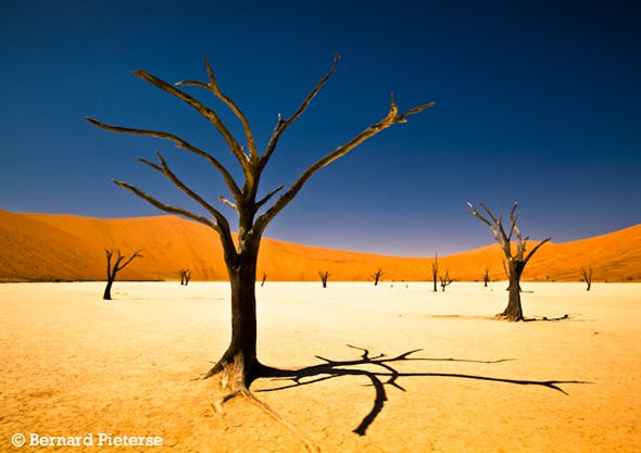 Sossusvlei by South African teenager Bernard Pieterse