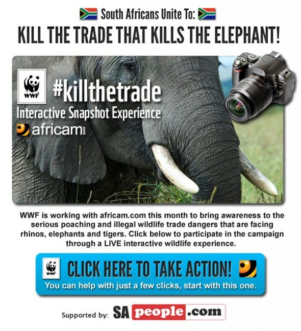 South Africans unite to Kill the Trade that Kills the Elephant