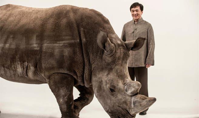 Jackie Chan and Spike the Rhino