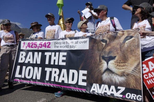 Avaaz - Ban the Lion Trade