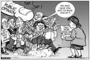 South African cartoon about Nkandla Report
