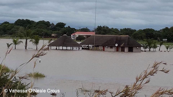 Ellisras floods