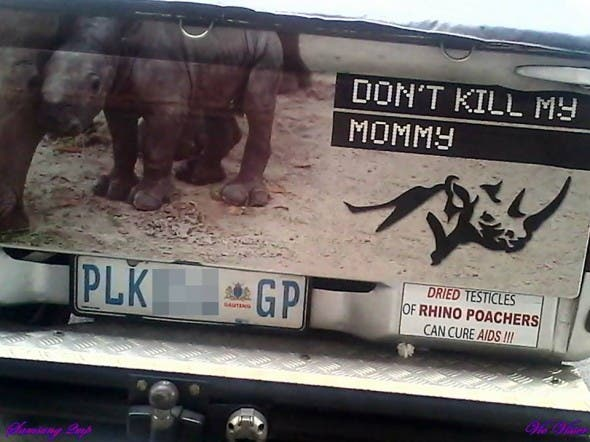 Anti-Rhino poachers