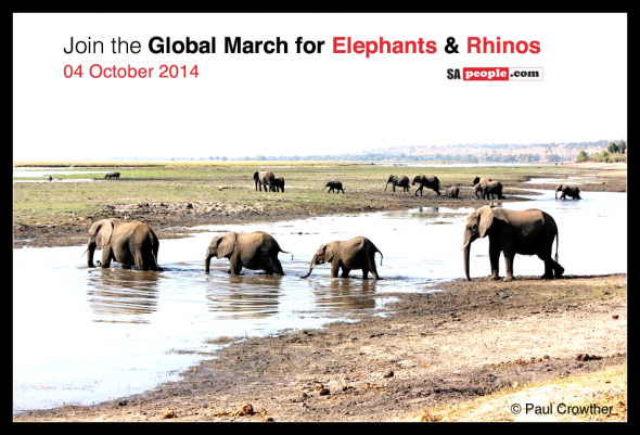 March for Elephants and Rhino