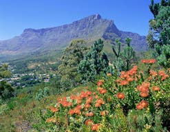 National Parks South Africa