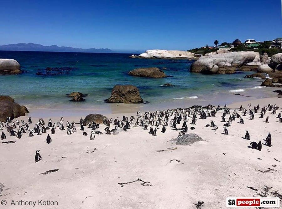 Beautiful photo of the Western Cape taken by Anthony Kottonhellip