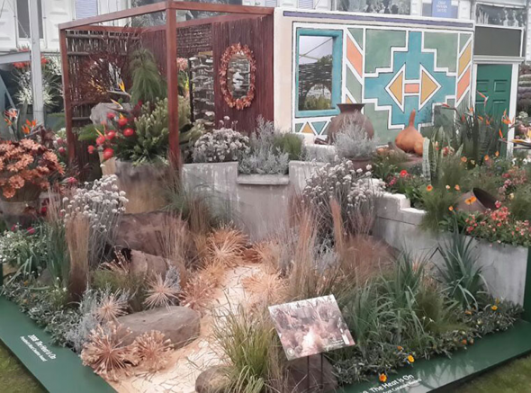 Part of SANBI Kirstenbosch RHS Chelsea Flower Show 2015 exhibit. © Kay Montgomery