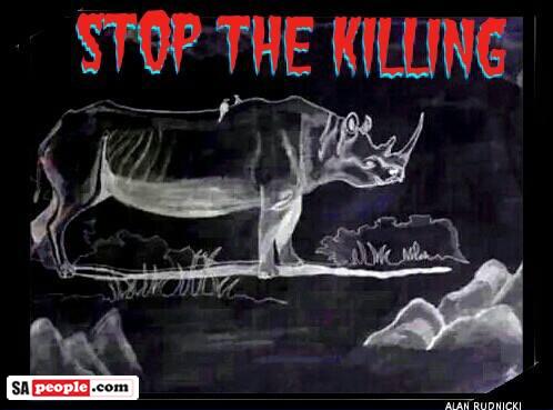 Rhino Poaching Stats South Africa
