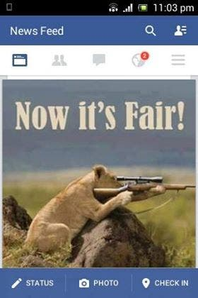 Cecil the Lion picture