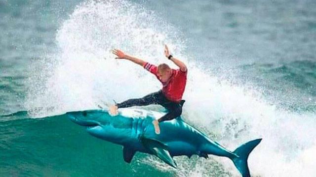 Mick Fanning shark jokes