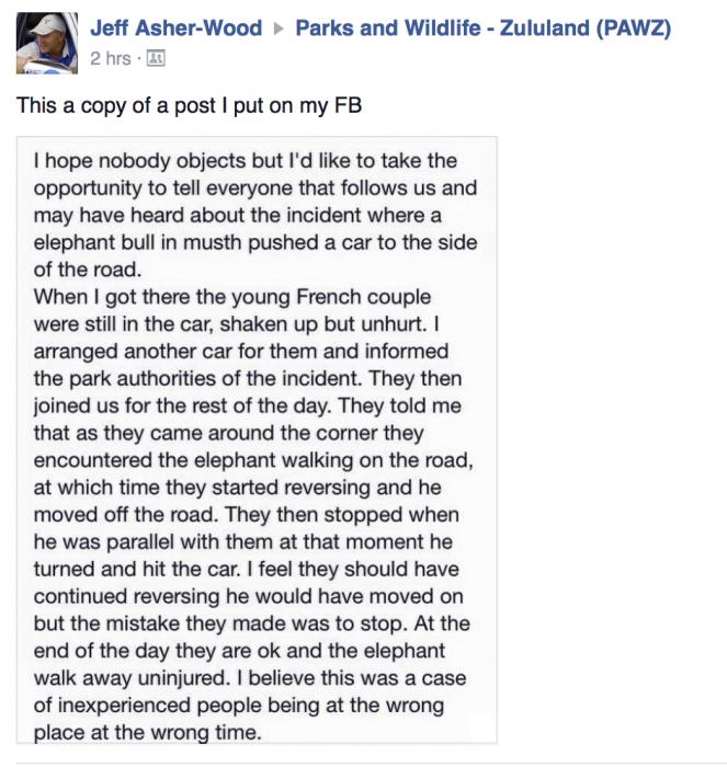 Car attacked by KZN elephant