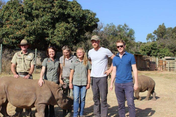 Prince Harry with rhino in South Africa.