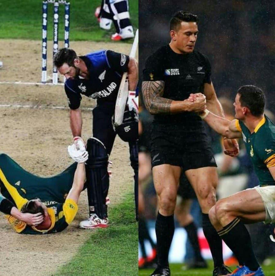 Springboks & All Blacks