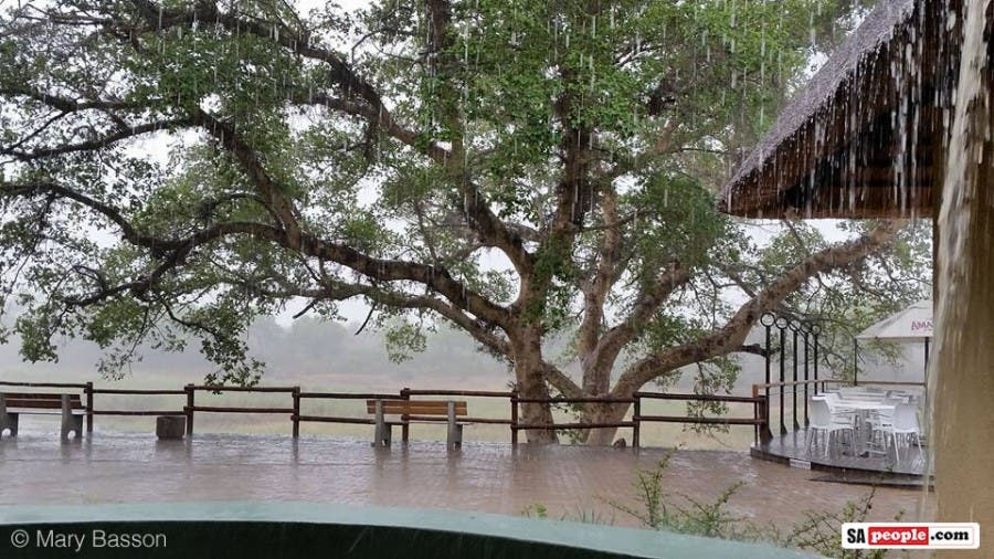 Rain in the Kruger