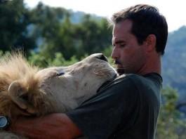kevinrichardson-lion