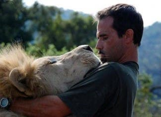 kevinrichardson-lion