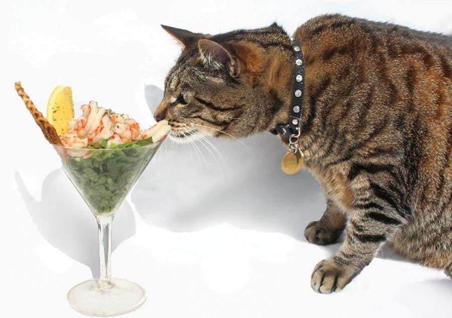 Prawn cocktails for Skabenga