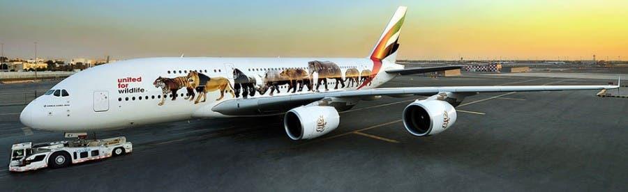 emirates-wildlife