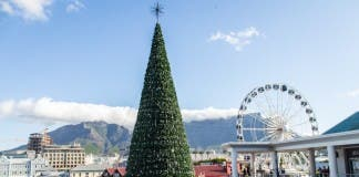Cape Town Christmas