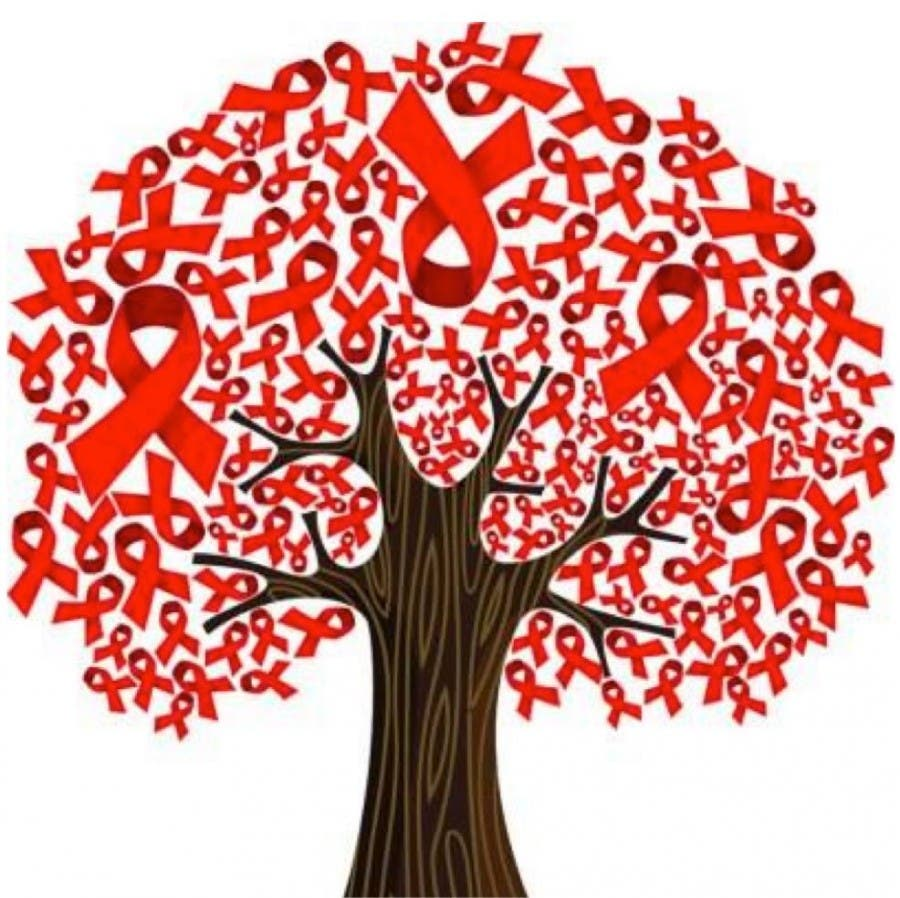 SA Has Excelled in Treating HIV  But Prevention is a Disaster