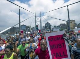 protest-zuma