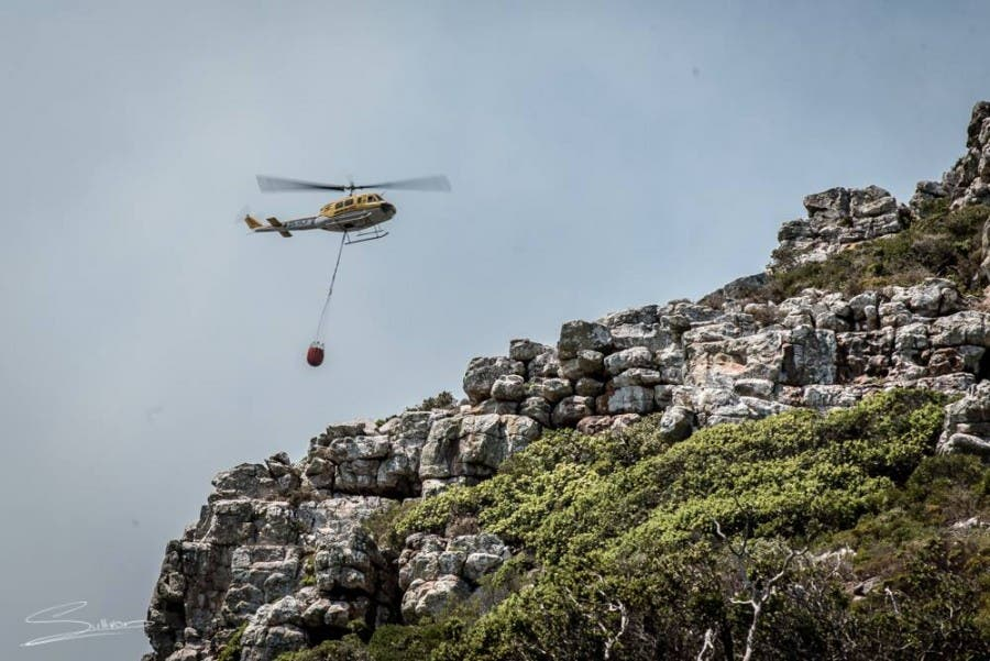 Cape Fires, South Africa
