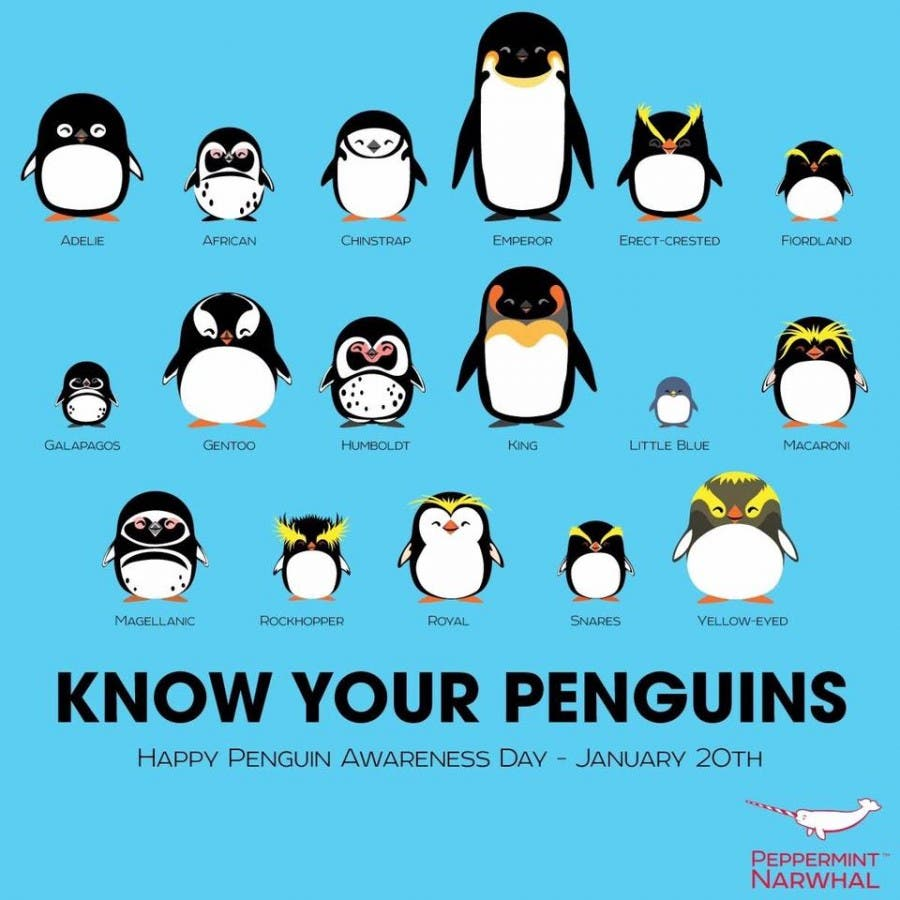 Know your penguins