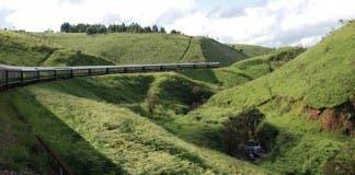 shongologo train