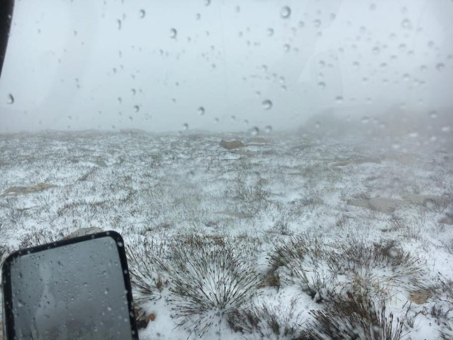 South African snow