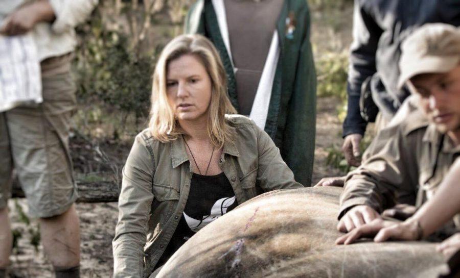 Jamie Joseph with rhino