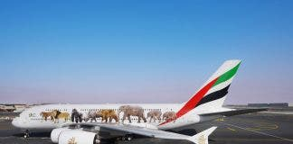 Emirates wildlife livery