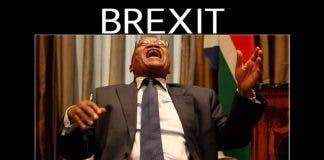 Brexit and Zuma