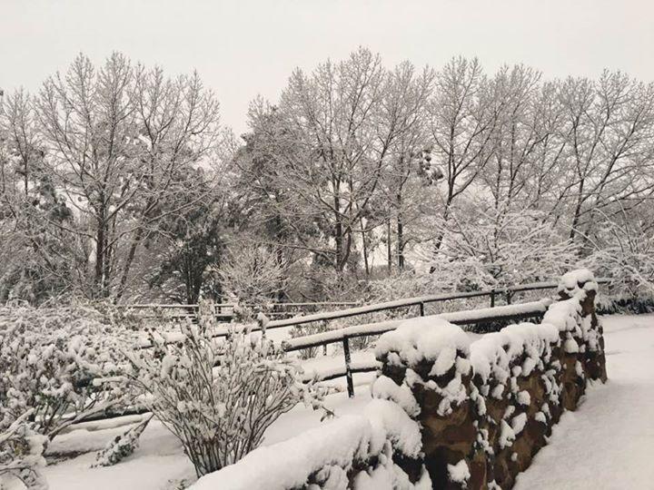 kzn-snow