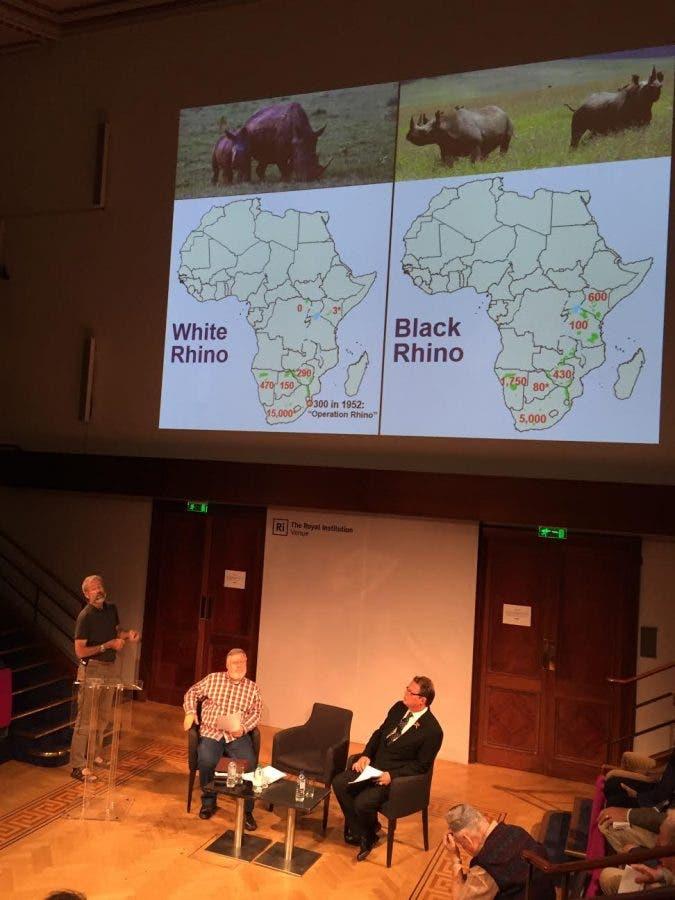 Debate on rhino horn trading