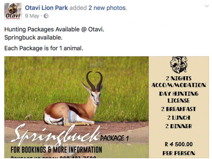 Hunting packages offered by Otavi