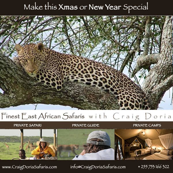 christmas-safari-serengeti-600