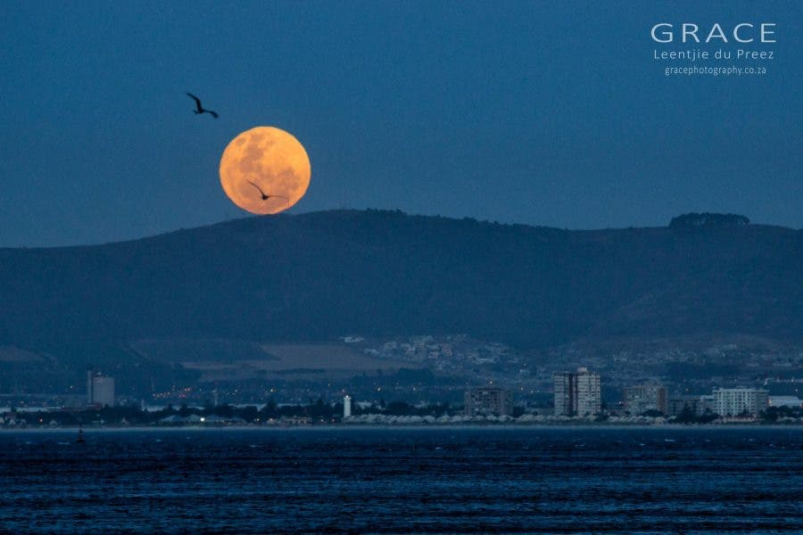how to see the extra super moon in sa
