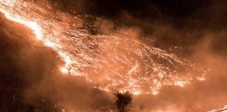 fire pringle bay