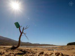 drought cape town