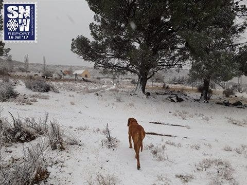Snowing In South Africa From The Drakensberg To Table