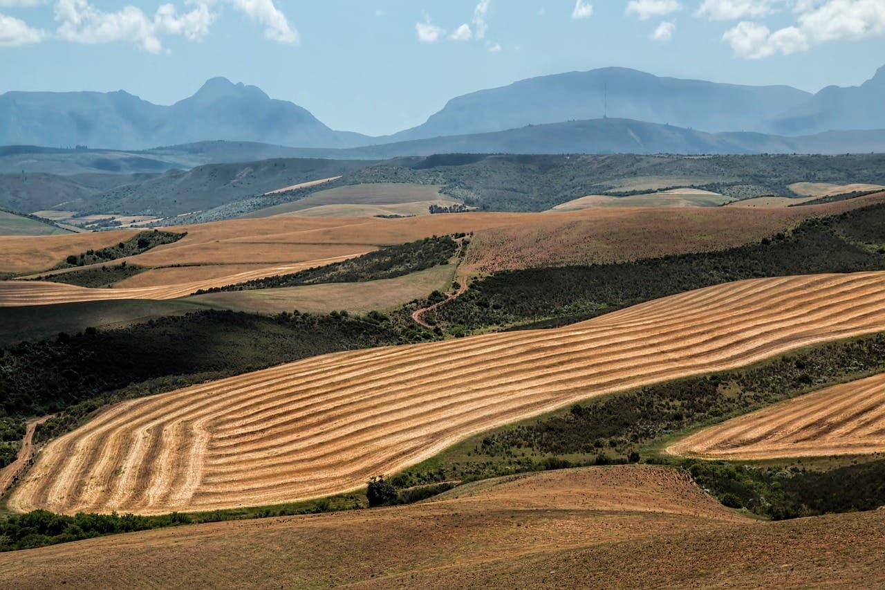 Da says land audit report revealing low black ownership for Landscape sa
