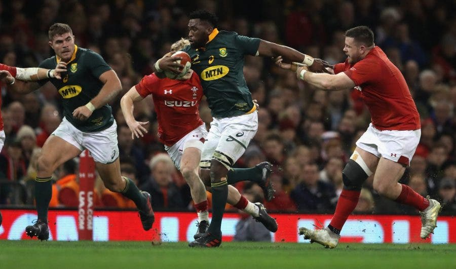 Springboks to Face Wales in Ground-Breaking Test in ...