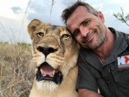 kevin richardson lion whisperer south africa