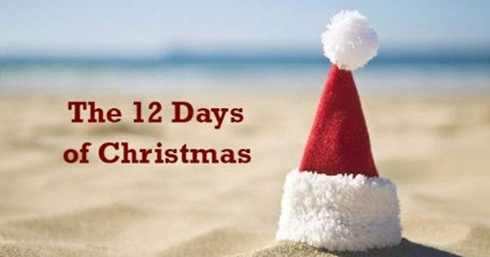 African Christmas.Watch 12 Days Of Christmas A Proudly South African Xmas