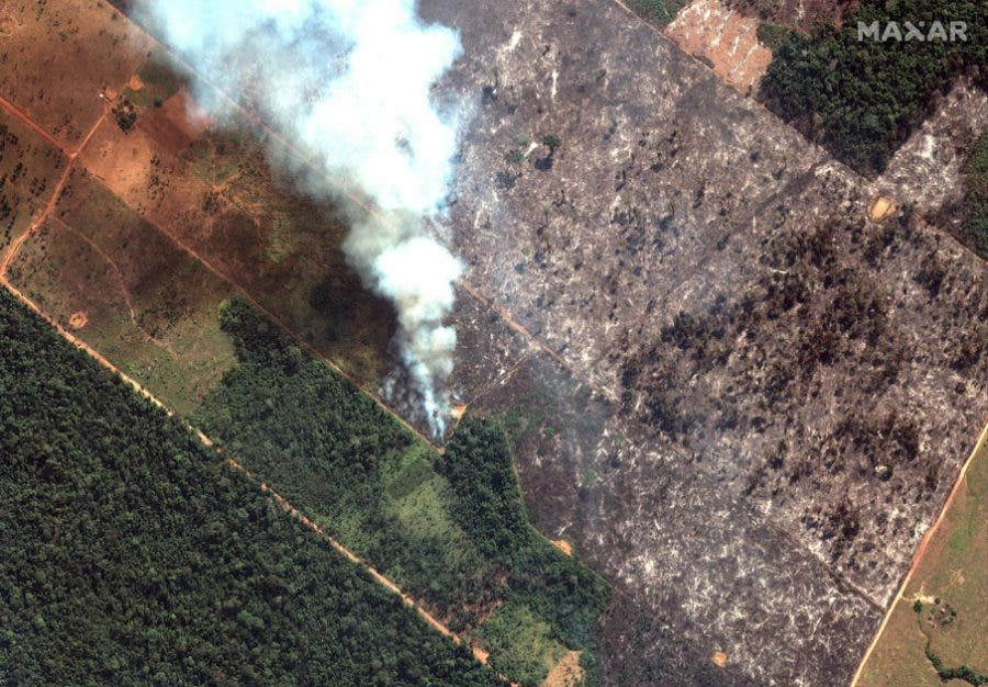 697631f9649cf Brazil's Bolsonaro May Send Army to Fight Amazon Fires After Global ...