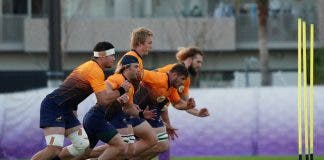 Rugby World Cup - South Africa Training springboks