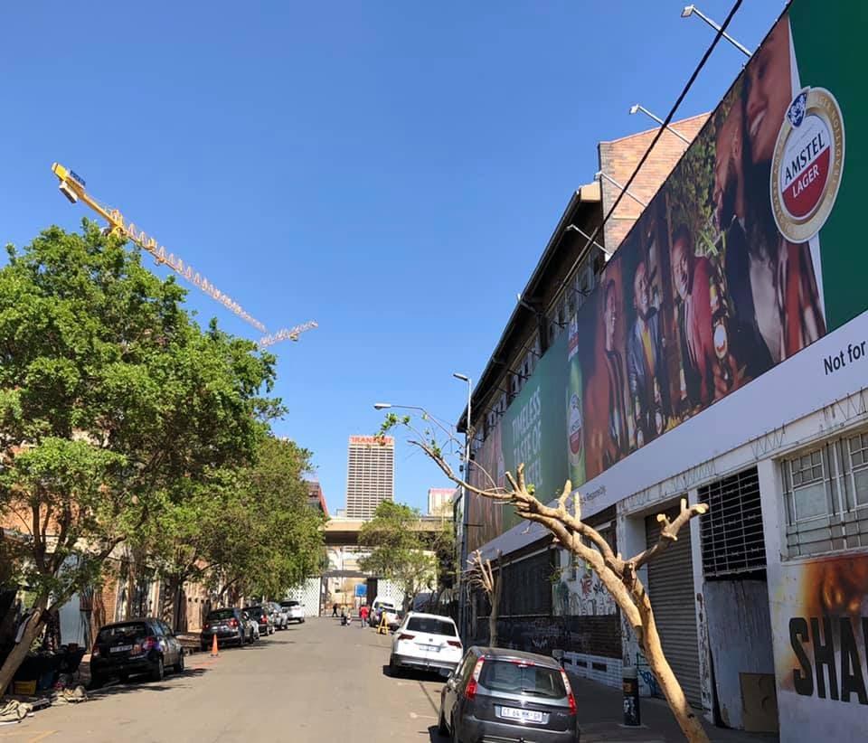 amstel tree pruning heineken johannesburg billboard