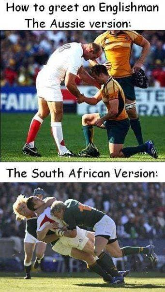 Springbok And Rugby World Cup 2019 Jokes And Memes Sapeople Your Worldwide South African Community