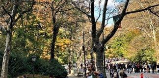 gerda steyn new york city marathon